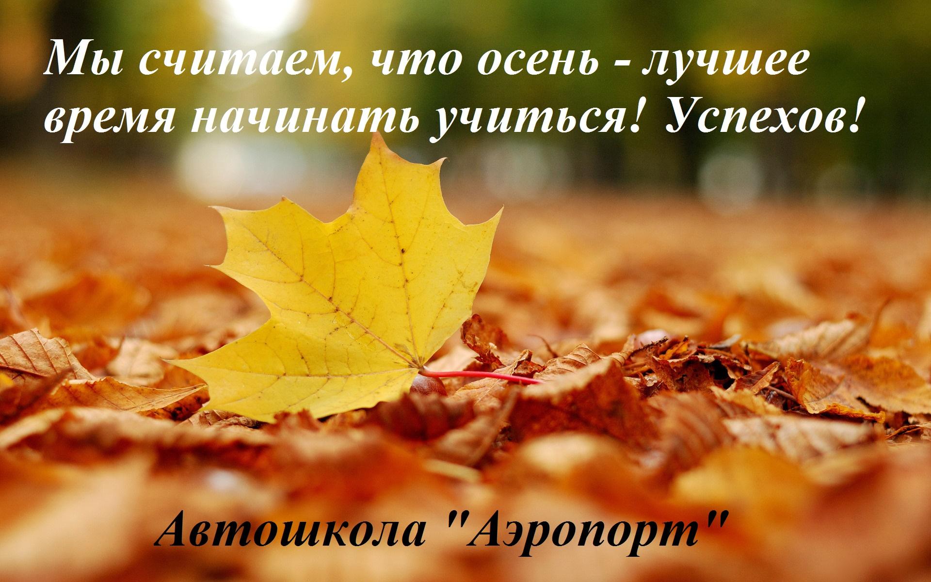 fonstola.ru-128571